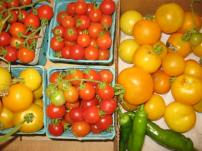 Tomatoes, Vegetable CSA